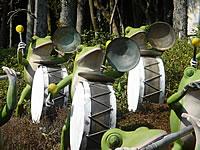 kannonfrogs2.jpg