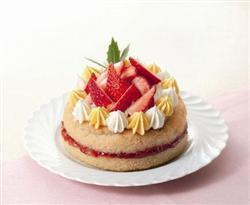 anti-allergy-christmas-cake1