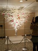 root-tree1