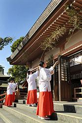 sususharai1